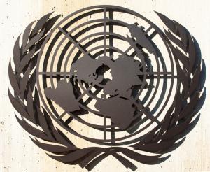 Le Défenseur des droits et l'ONU
